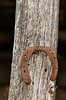 Rusty horseshoe on old wooden pole