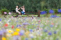 Boy and girl playing clapping game on fence in wildflower field
