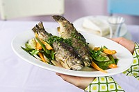 Trote primavera trout with spring vegetables, Italy