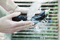 Italy, Tuscany, Magliano, Close up of woman's hand washing aubergine under water