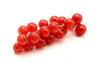 Red currant on a white background