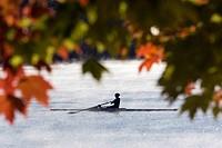 Rowing in Early Morning Mist - Lake Julian - Asheville, North Carolina USA