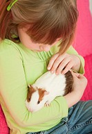 USA, Illinois, Metamora, Girl 4_5 holding guinea pig