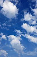 Cloudscape with blue sky, low angle view looking up