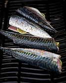 freshly prepared mackerel