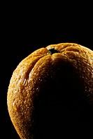Closeup of Orange is illuminated black background
