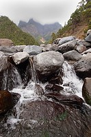 Taburiente River, Caldera de Taburiente National Park, Biosphere Reserve, ZEPA, LIC, La Palma, Canary Islands, Spain, Europe