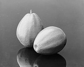 Avocado on grey background, close_up