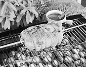 Spit roasting of chicken on barbecue grill