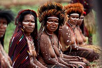 Local group of nacked Papua women joining the Baliem Valley festival, sitting in the grass in traditional appearance, sharp focus on one woman only, J...