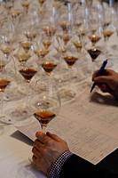 Notes taken for wine tasting