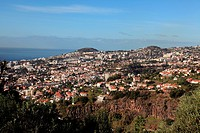 view from Botanical Gardens to the city Funchal, Funchal, Portugal, Europe