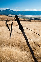 Field and fence in John Day Valley. Wheeler County, Oregon, USA