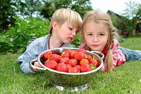 Boy and girl with strawberries in a colander