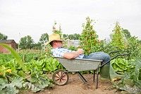 Man sitting in wheelbarrow in garden