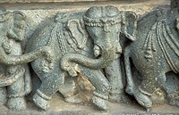 Elephant carvings on the base of the Main Sanctuary at Chennakeshava Temple, Belur, Karnataka, India