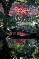 Tranquil fall setting with changing leaves reflected in pond of classical Shukkeien garden dating to AD 1620 in Hiroshima, Japan.