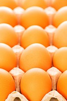 Many brown eggs in the basket _ shallow DOF