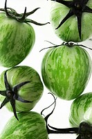 Green Zebra tomatoes in water