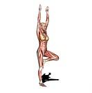 yoga practice tree