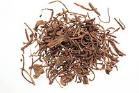 dried roots of the medicinal plant Aster tataricus , Purple Aster Root , Zi Wan