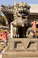 China Summer Palace Guardian Lion