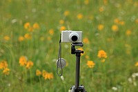 A camera on Fengning grassland in Hebei,China