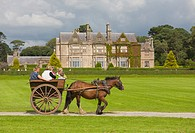 Jaunting Cars at Muckross House, Killarney, County Kerry, Ireland
