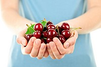 Hands holding bunch of cherries