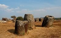 rocks on the meadow