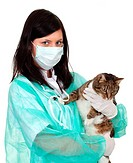 woman vet with cat in surgery