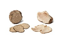 Black and white truffle on white background