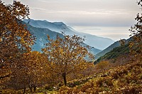 Autumn in the Taygetos mountains looking south toward the Deep Mani, from above Kastania in the Outer Mani, Southern Peloponnese, Greece