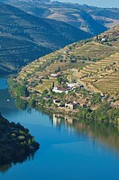 Douro river and Porto Wine vineyards, Alto Douro, Tras-os-Montes, Portugal, Unesco World Heritage site