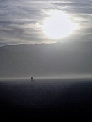 A man walks in the desert during the Burning Man festival.