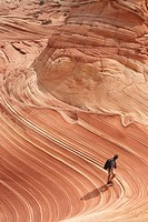 Man walking through The Wave, Coyote Butte, Paria Canyon Vermillion Cliffs Wilderness, Kanab, Arizona, United States of America, North America