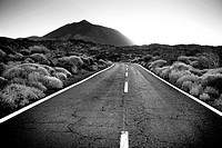 Road in Teide National Park Tenerife  Canary Islands  Spain