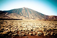 El Teide, National park, Tenerife, Canary Islands, Spain