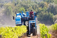 grape harvesting machine, grape harvest, vineyards, chianti, area of brolio, province of siena, tuscany, italy, europe