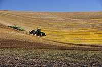 Farm tractor preparing Palouse farmland in spring  Washington