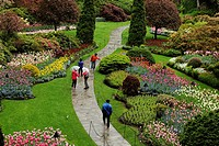 Visitors exploring Butchart Gardens- Sunken Garden Victoria BC