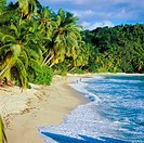 Beach with palm trees, Mah&#233; island, Seychelles