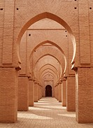 Morocco - The now ruined and partly restored Tin Mal Mosque in the High Atlas Mountains was built by Abd El Moumen around 1153-1154 and is strongly li...