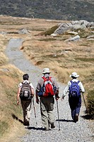 Bushwalkers in the Australian Alps  Kosciuszko National Park, New South Wales
