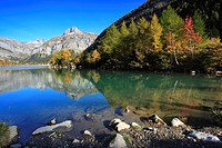 Derborence, mountain lake, lake, Lac de Derborence, larch, larches, larch wood, natural pearl, Unterwallis, Valais, Switzerland, Europe, golden, glass...