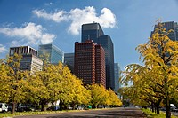 Japan, Asia, Tokyo, city, Hibya Park, Marunouchi, Skyline, Sky, Tree Tower, architecture, blue, central, city, dense, downtown, financial, imperial, p...