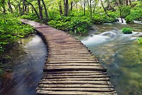 Wooden footbridge in Plitvice National Park