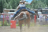 A rear view of a barrel racer dashing for that 3rd barrel, Alberta, Canada