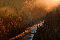 Mist rising at daybreak from the Barron River in Algonquin Provincial Park´s Barron Canyon. Ontario, Canada