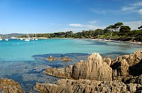 Plage d´Argent or Silver Beach Porquerolles Island Lerins Islands Côte d´Azur French Riviera Var Provence France